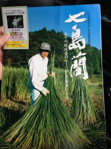 七島藺草のパンフレット